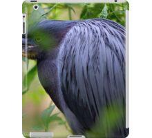Grouchy Bird iPad Case/Skin