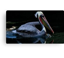 Smooth Swimming Canvas Print