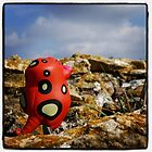 Bombo in the wild by peestols