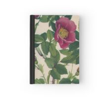 Wild Rose-Available As Art Prints-Mugs,Cases,Duvets,T Shirts,Stickers,etc Hardcover Journal