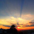 ©HCS Sunshine XI by OmarHernandez
