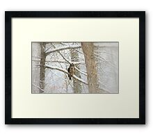 I Have My Eyes On You Framed Print