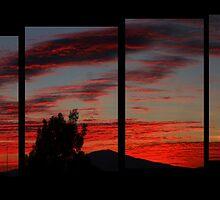 ©HCS Red Cirrus Floccus I by OmarHernandez