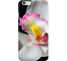 White Beauty - Cymbidium Charles Darwin iPhone Case/Skin
