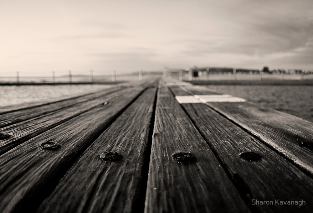 Bolts of the Boardwalk_Narrabeen by Sharon Kavanagh