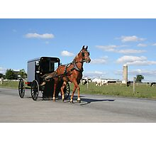 Amish Horse and Carriage Photographic Print