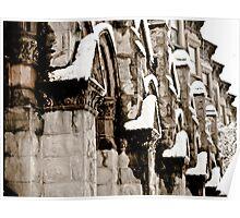 Snowy Facade  Poster