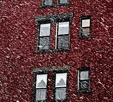 White Christmas by AbeCPhotography