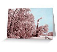 Southern Illinois Winter Scene 8_ Dec 2012 Greeting Card