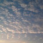 Cloudscape by lblight