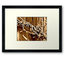 Rusty but Strong Framed Print