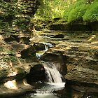 Ithaca is Gorgeous  by CcoatesPhotos