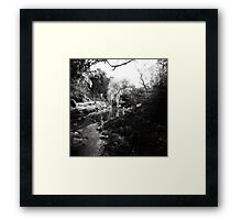 Merri Creek Framed Print