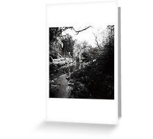 Merri Creek Greeting Card
