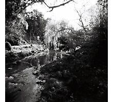 Merri Creek Photographic Print