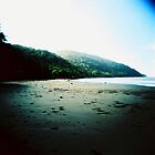Cape Tribulation by KerrieMcSnap