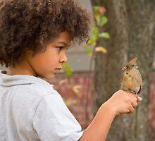 Bird's Eye by Jordan Selha