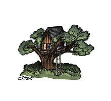 Dreaming of Tree Houses Photographic Print
