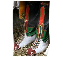 Traditional footwear, embroidered leather boots Poster