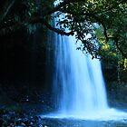Killen Falls - Tintenbar NSW by Emmy Silvius