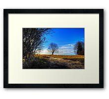 Nature Dreams Framed Print
