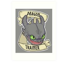 Toothless - Dragon Trainer Art Print