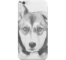 Husky Shepherd Cross with Blue Eyes iPhone Case/Skin