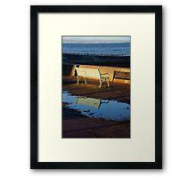 Puddle & Bench Framed Print
