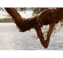 Lake Ainsworth - Lennox Head NSW Photographic Print