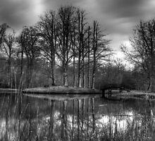 Vijversburg by Ruben Emanuel