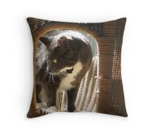 Monkey in a cane chair Throw Pillow