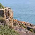 The Bluff in Devonport by Elaine Game
