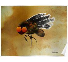 Dark Fly Poster