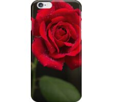 Red of the Rose iPhone Case/Skin