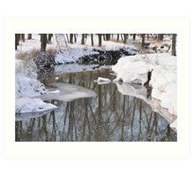 Snowy River scene Art Print