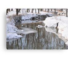 Snowy River scene Metal Print