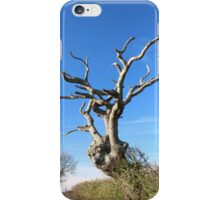 Old Tree iPad/iPhone Case iPhone Case/Skin