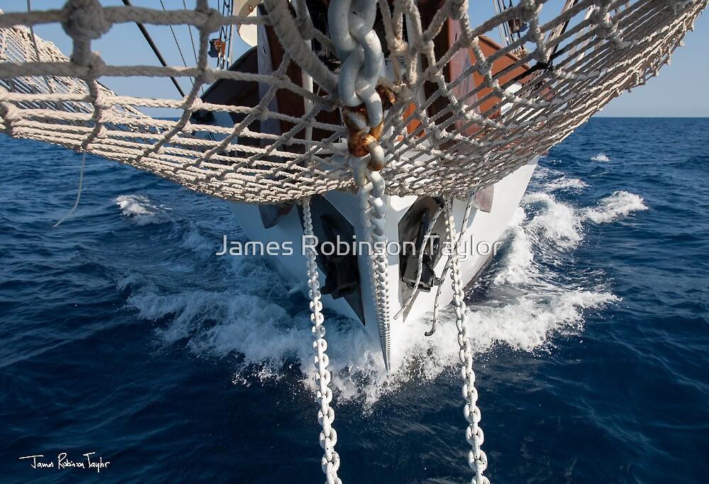 Delfin by James Robinson Taylor