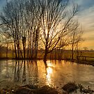 Sunset on pond by jordygraph