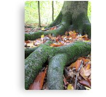 Mother's Roots Canvas Print