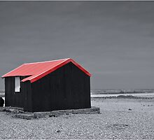 Bleak with a touch of Red by Nigel Jones