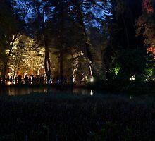 Pitlochry Enchanted Forest 2012 1 by beardyrob