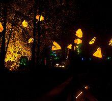 Pitlochry Enchanted Forest 2012 4 by beardyrob
