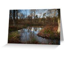 Wood near Newbyth 1 Greeting Card