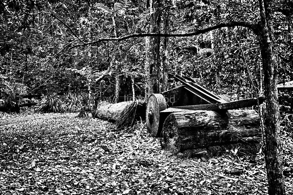 Old Saw Mill Cart by JimMcleod