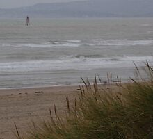 Camber Sands to Fairlight in Winter by seymourpics