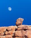 iPad Case. Moonstruck. by Alex Preiss