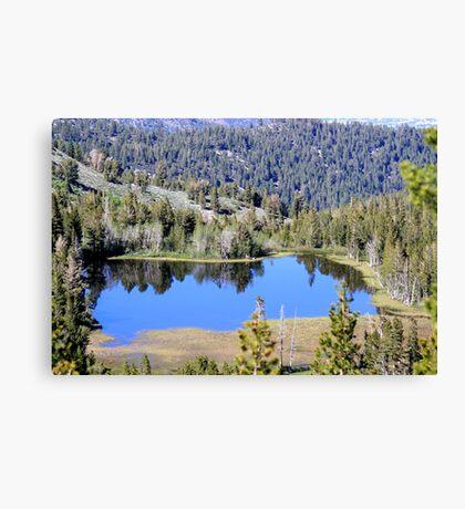 Pond on Mt Rose,Reno,Nevada USA Canvas Print
