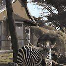 Zebra Case by MsArtMinaj