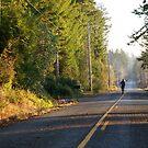 Key Peninsula, Washington state by Rainydayphotos